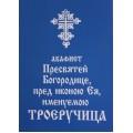 """Акафист Пресвятой Богородице в честь иконы """"Троеручница"""""""
